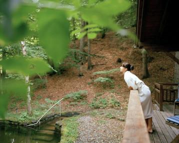 Die Waldsauna des Biohotel der daberer im Wald hinter dem Hotel (Dab-0659) | Foto: Biohotel der daberer/Hauke Dressler