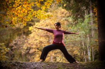 Yoga im herbstlichen Wald hinter dem Biohotel der daberer | Foto: der daberer. das biohotel/F. Neumüller