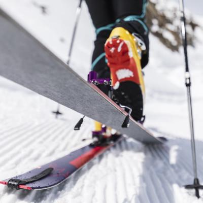 Die neuen Kohla-Skitourenfelle - vier verschiedene Farben für unterschiedliche Einsatzbereiche: Freeride (violett), Alpinist (orange), Vertical (grau) und Race (hellgrün)